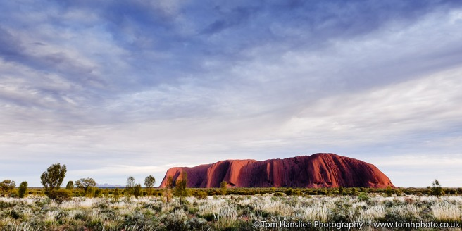 View of Uluru at sunrise in the Uluru-Kata Tjuta National Park.